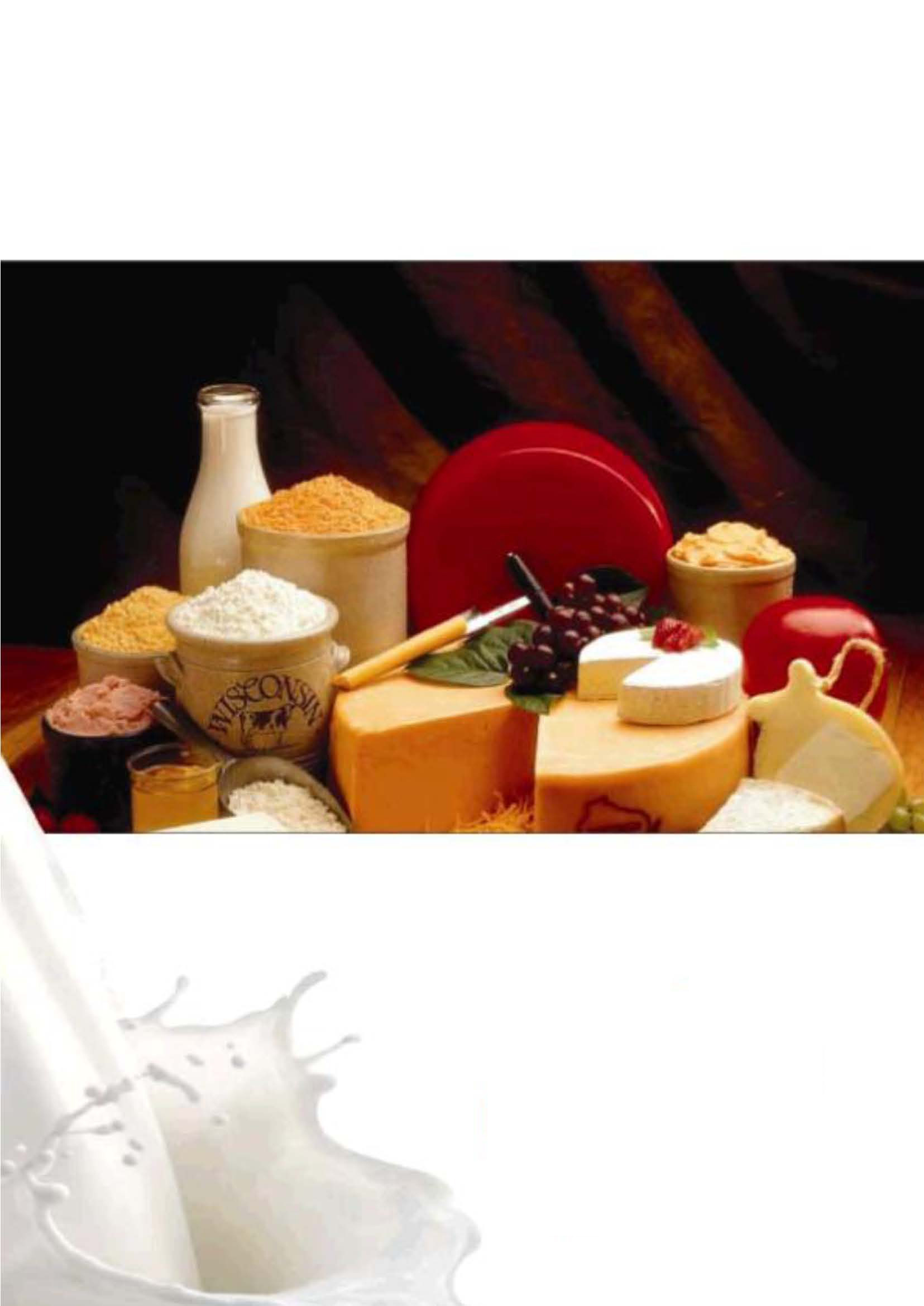 Dairy Products China News