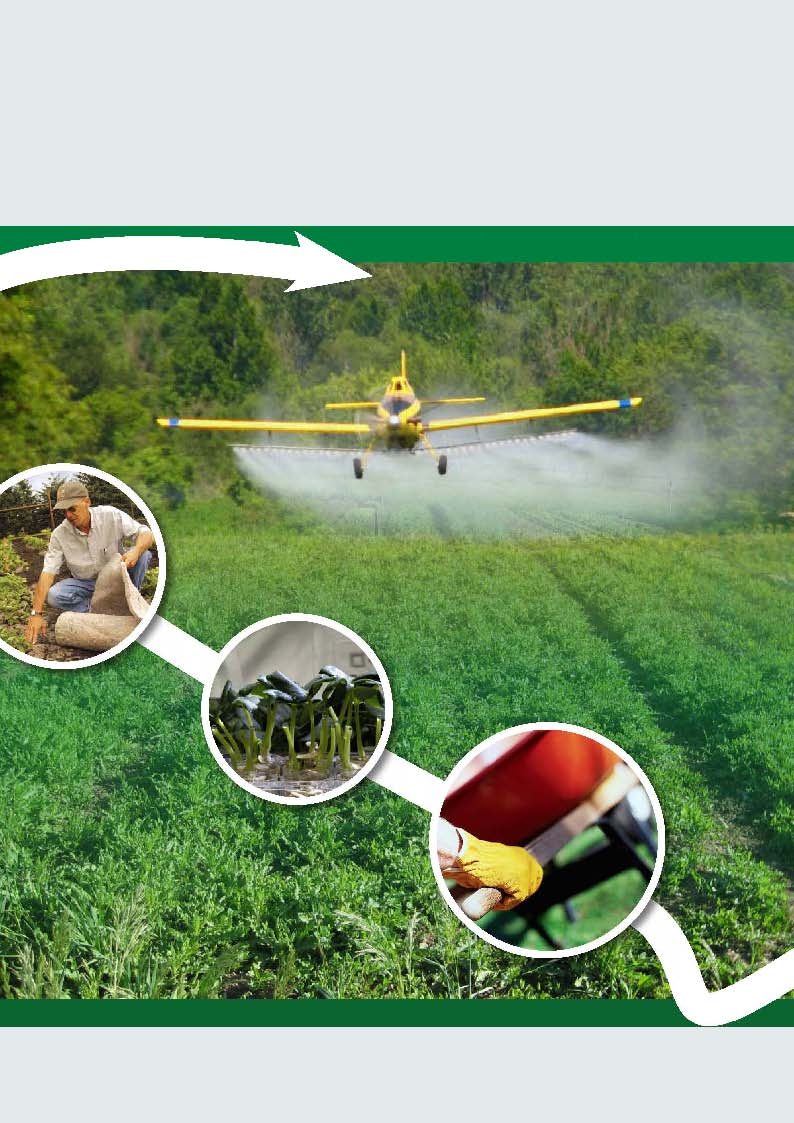 Herbicides China News (Chinese version)