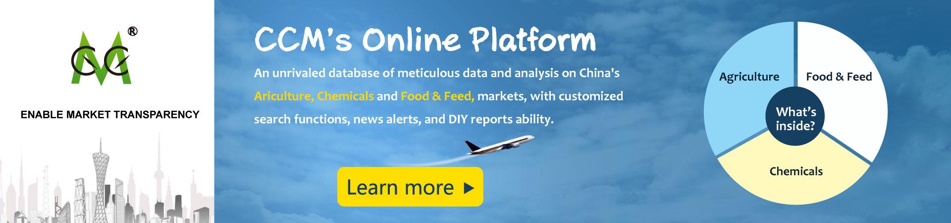 China Market Database