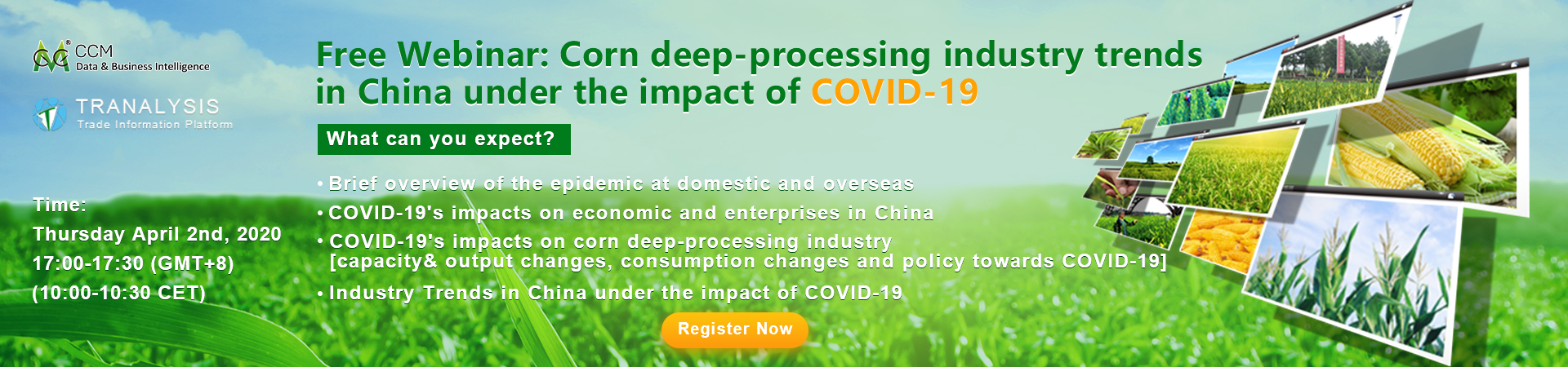 Corn deep-processing industry trends in China under the impact of COVID-19