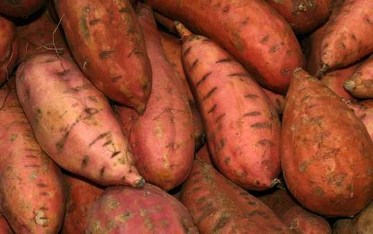 Analysis on Consumption Structure of China's Sweet Potato Products and Trading of Domestic and Foreign Markets Part 1